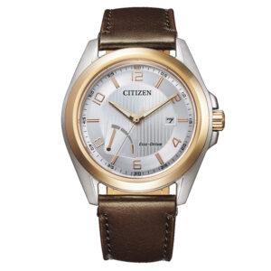 orologio citizen acciaio bicolore oro argento cinturino pelle marrone
