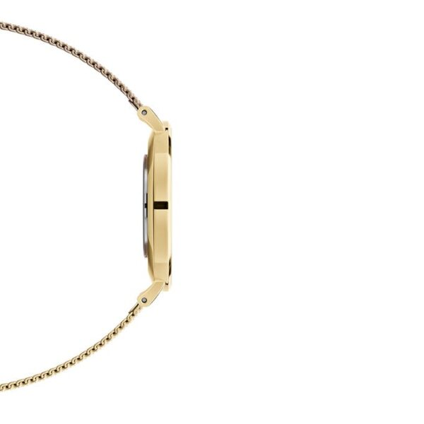 orologio oro dw petite evergold 36