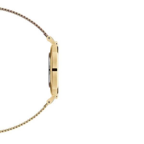 orologio dw oro 36 petite evergold